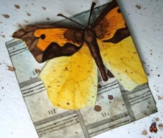 art_butterfly02