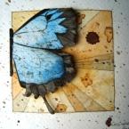 art_butterfly03
