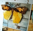 art_butterfly08