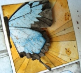 art_butterfly09