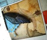art_butterfly10