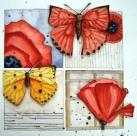 poppybutterfly1