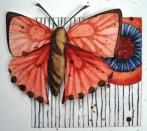 poppyred1
